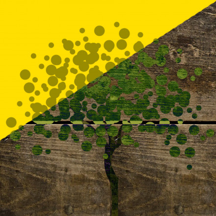 Branding EcoPaper